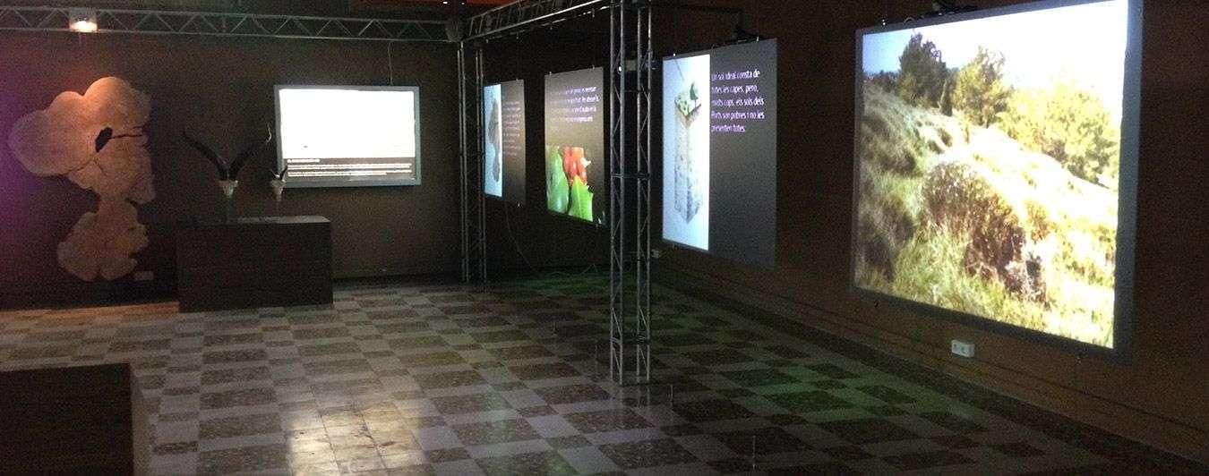 Museus i sales d'exposició | Nextec Projects